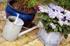 Garden Stock Photos