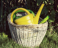 Garden watering cans in the wicker basket Royalty Free Stock Photo