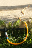 Garden watering hose. And fence royalty free stock image