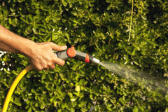 Garden watering with nozzle Stock Photos