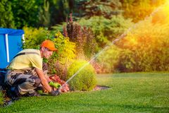 Garden Watering Systems. Garden Technician Testing Watering Sprinkler System in the Residential Garden Royalty Free Stock Image