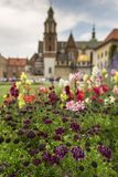 Garden in Wawel Castle, Cracow, Poland Stock Image