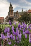 Garden in Wawel Castle, Cracow, Poland Royalty Free Stock Image