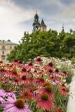 Garden in Wawel Castle, Cracow, Poland Stock Photo