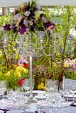 Garden Wedding Royalty Free Stock Image