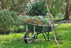 Garden weeds in wheelbarrow Stock Photos