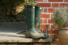 Garden Wellingtons. A pair of gardening boots set on a patio step next to a terracotta pot containing Thyme. Backdrop consists of the end of a bricked building Stock Photos