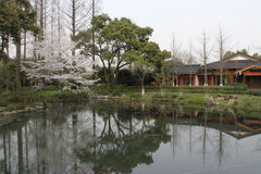 Garden in West Lake of Hangzhou, China Stock Photo