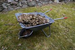 Garden wheelbarrow with leaves Royalty Free Stock Photos