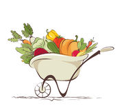 Garden wheelbarrow with vegetables Royalty Free Stock Photo