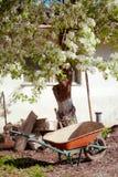 Garden wheelbarrow on the yard under the blooming pear tree. Vertical photo shot Stock Image