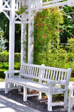 Garden with white bench Stock Photography