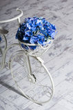 Garden white bicycle with a basket of flowers blue hydrangea Stock Photos