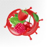 Garden and wild berries. Vector realistic juice splash, raspberry, strawberry, cherry isolated on transparent background. Red berry healthy, cherry juice fresh royalty free illustration