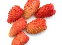 Garden wild strawberry. Red wild strawberry on a white background a close up Stock Photo
