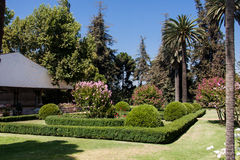 Garden Winery Chile Royalty Free Stock Images