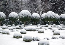 A garden in winter (France Europe) Stock Images