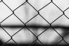 Garden wire fence close up macro shot at correctional institute. In black and white royalty free stock photos