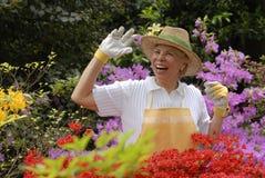 Garden woman. Stock Photos