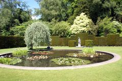 Water lily pond in a topiary garden Stock Photos