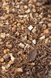 Garden wood chips Royalty Free Stock Image
