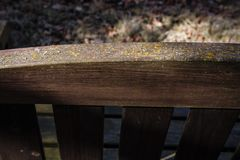 Dark brown wood bench detail in close-up. Garden wooden bench seat back upper part of the close-up. Overgrown with moss and lichens. Dark brown wood bench Stock Photography