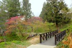 Garden. Wooden bridge in beautiful garden Stock Photo