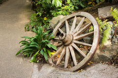 Garden Wooden Wheel Stock Photo