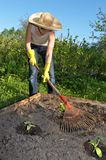 Garden work Stock Photography
