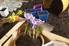 Garden work Stock Image