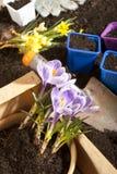 Garden work Royalty Free Stock Photos