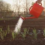 Garden work Stock Images