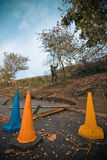 Garden Work. Man cutting branches off a tree with traffic cones in the foreground Stock Images