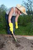 Garden work. Loosening woman stock images
