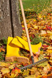 Garden work in autumn. Maple leaves, rubber boots and a rake royalty free stock image