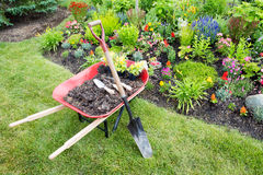 Garden work being done landscaping a flowerbed. With a red wheelbarrow full of organic potting soil and celosia seedlings standing with a spade on a manicured royalty free stock image