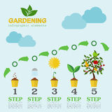Garden work infographic elements. Working tools set Royalty Free Stock Image