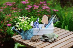 Garden work still life in summer Stock Images