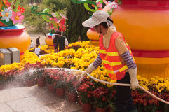 Garden worker in the watering the flowers Stock Photo