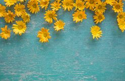 Garden yellow and orange flowers on a blue wooden background Stock Images