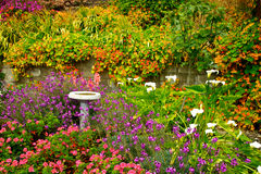 Garden4 fiorito fertile Fotografie Stock Libere da Diritti