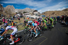 Gardena, Italy May 21, 2016; Group of professional cyclists during the very hard climb of Passo Gardena Stock Images