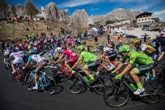 Gardena, Włochy Maj 21, 2016; Grupa fachowi cykliści podczas bardzo ciężkiej wspinaczki Passo Gardena Zdjęcia Royalty Free