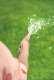 Gardender watering green grass in a garden Stock Photography