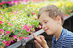 Gardener. 7 years old boy in his flower garden - kids and family stock photography