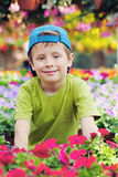 Gardener. 7 years old boy in his flower garden - kids and family royalty free stock image
