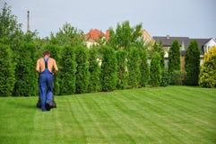 Gardener. A young gardener cutting grass on garden Stock Image