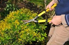 Gardener Royalty Free Stock Photos