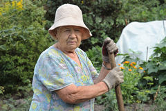 The gardener royalty free stock photos