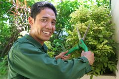 Gardener. The smiley gardener at work. this series here royalty free stock image